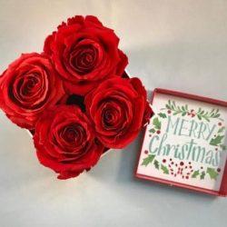 preserved-roses-box