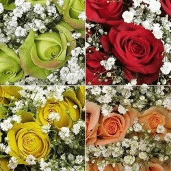 Assorted-Rose-Bouquets