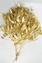 Gold Painted Seeded Eucalyptus