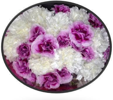 Mini Carnation Bouquet