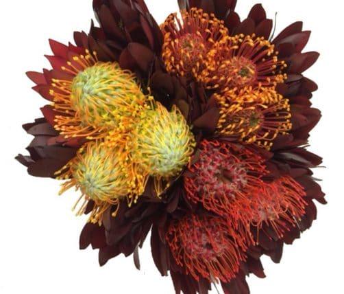 pincushion bouquet
