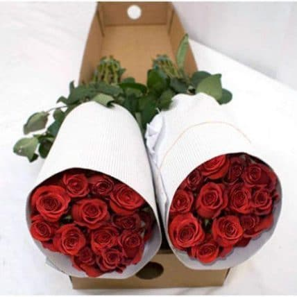 red rose packing - 1,000 Red Roses Wholesale Bulk