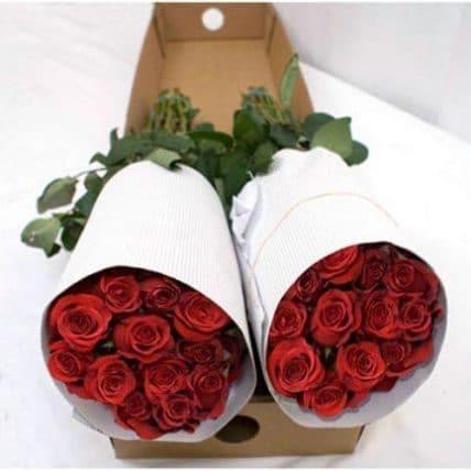 red bulk roses