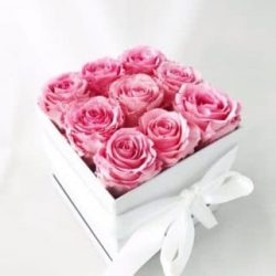nine preserved roses deluxe gift box