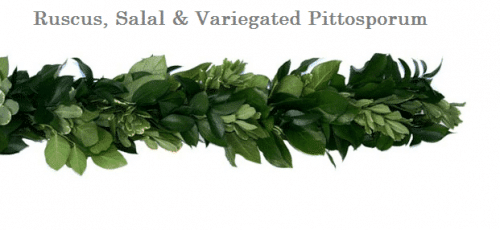 Ruscus-Salal-variegated-pittosporum-wedding-garland