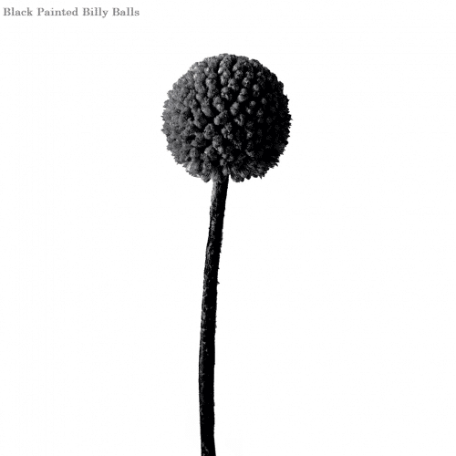 black-billy-balls