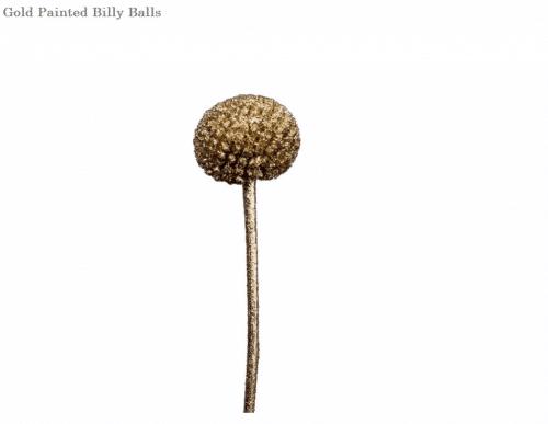 gold-billy-balls