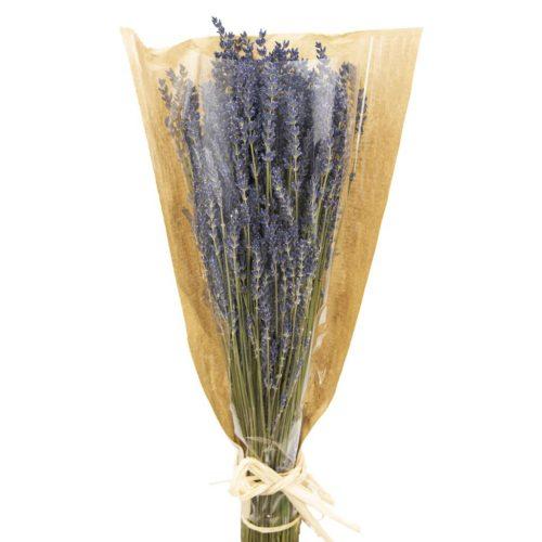 dried-lavender-flowers