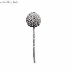 silver-billy-balls