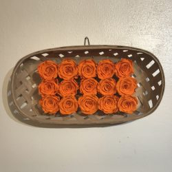 preserved rose wall decor