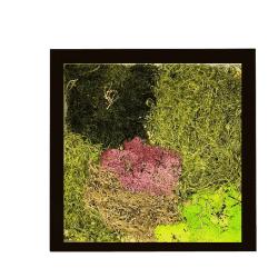 moss-black-frame