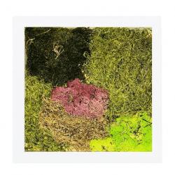 moss-white-frame