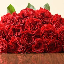 hearts-red-roses