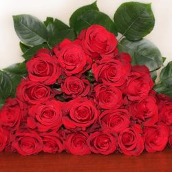sexy-red-roses