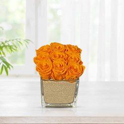 preserve-roses-glass-vase