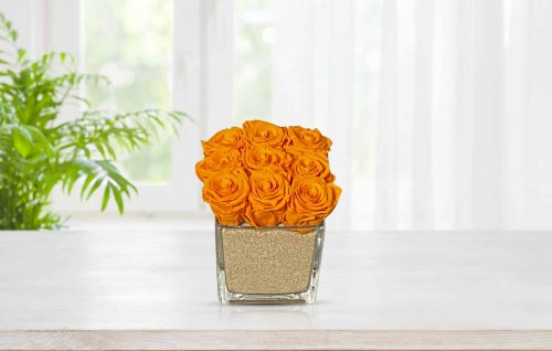 preserved roses in glass vase