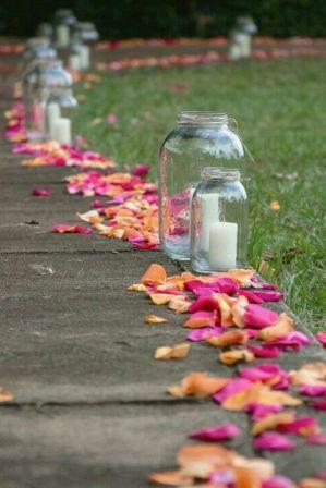 rose-petal-pathway
